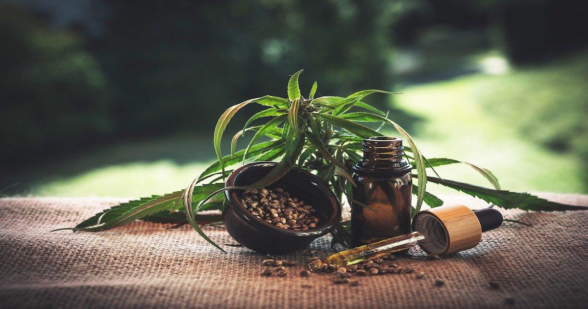 Nouveau report de l'expérimentation de l'usage du cannabis thérapeutique en France