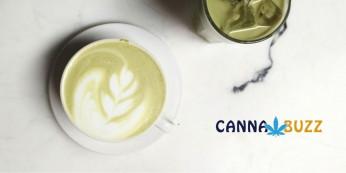 Chai Latte au cannabis CBD